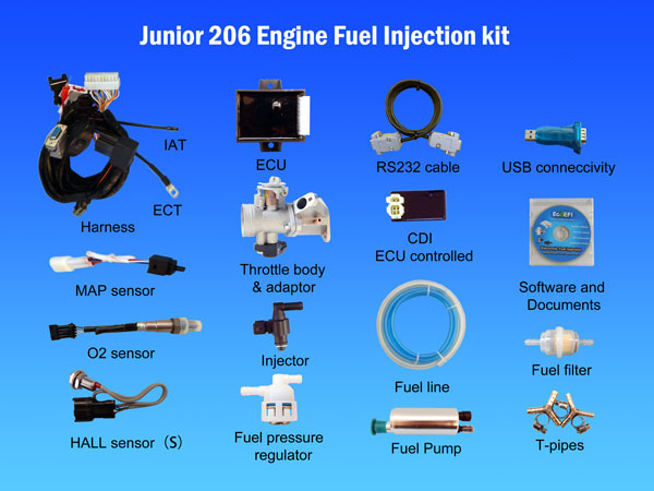 junior-206-Engine-Fuel-Injection-Kit